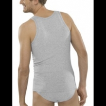 2-pack Cotton Essential singlet
